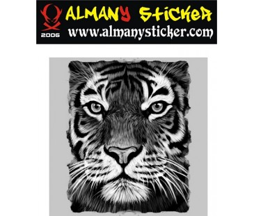 Kaplan sticker-4,