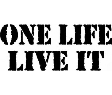 One life live it sticker,jeep sticker,off road sticker