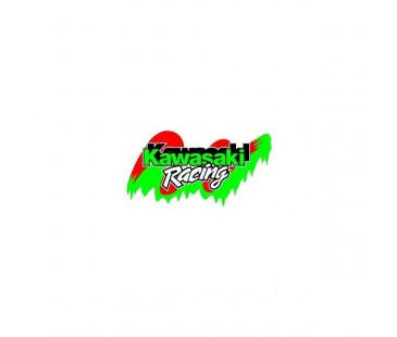 Kawasaki Racing Sticker