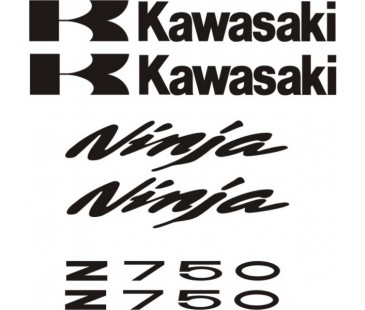 Kawasaki Z750 Sticker Set