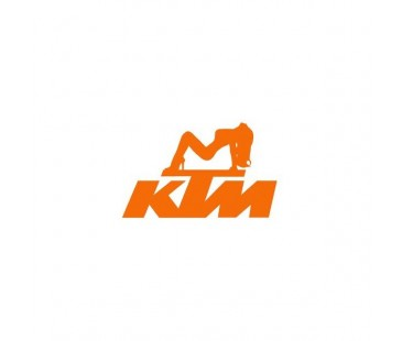 Ktm Women Sticker